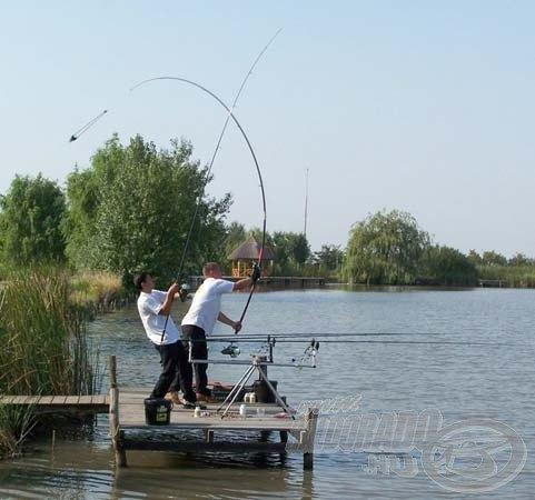 Carp fishing world record catch sbs baits